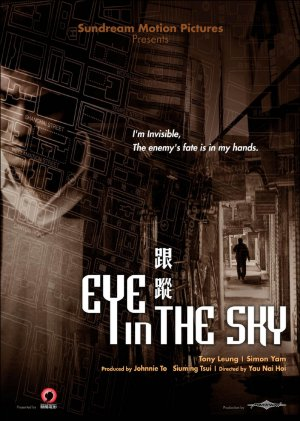 eye-in-the-sky.jpg