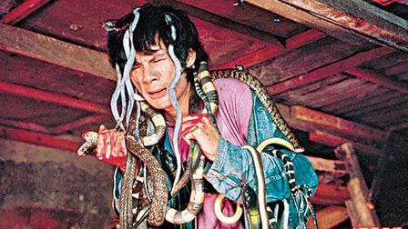 the-killer-snakes